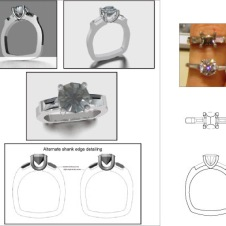 ring Model (1)